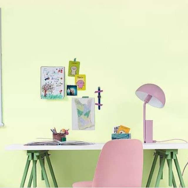 Krāsu kombinācijas skolas vecuma zēnu un meiteņu istabā - Alpina Krāsas
